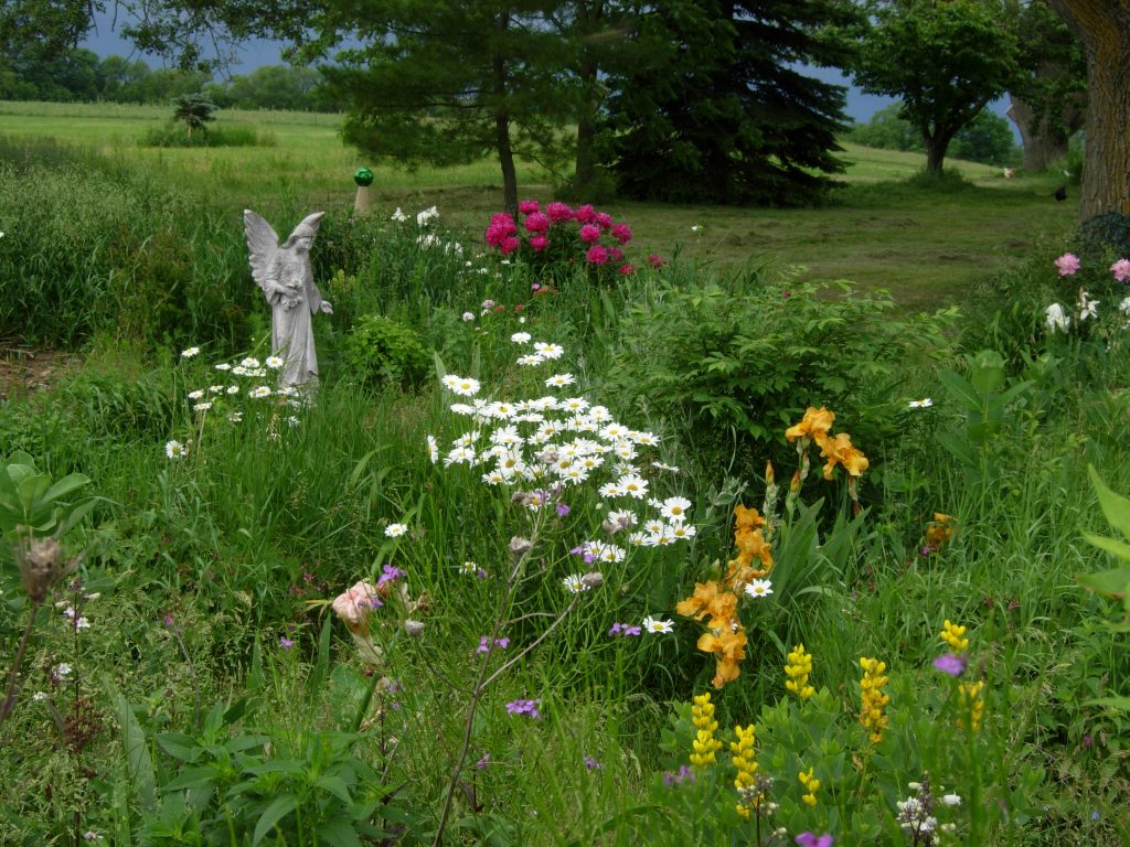 Patches of white, yellow, and red flowers in tall grass next to a stone angel statue.
